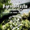 panfleto Curso prático em Sistemas Agroflorestais
