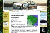 a-Rondônia .net