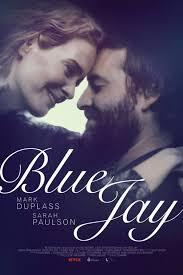 panfleto 'Blue Jay'