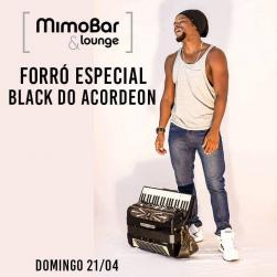 panfleto Black do Acordeon