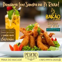 panfleto Barão do Samba