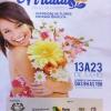 panfleto Flores de Arraial