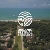 panfleto 2° Organic Festival